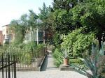 写真3 欧州最古植物園.jpg