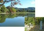大沢の池と名古曾滝跡(75%).jpg